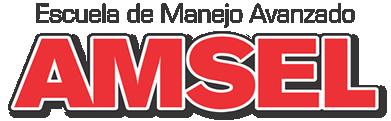 Amsel Driver Escuela Manejo Avanzado